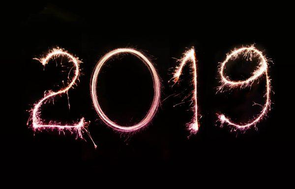 הסיכונים המשמעותיים ב 2019 בביקורת פנימית